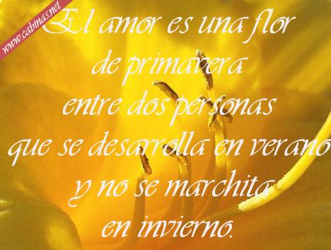 IMAGENES CON MENSAJES ROMANTICOS TARJETAS DE AMOR|POEMAS DE AMOR ...